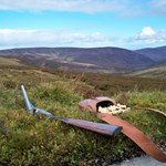 Grouse shooting days available at Glenmuick Sporting estate for guests.